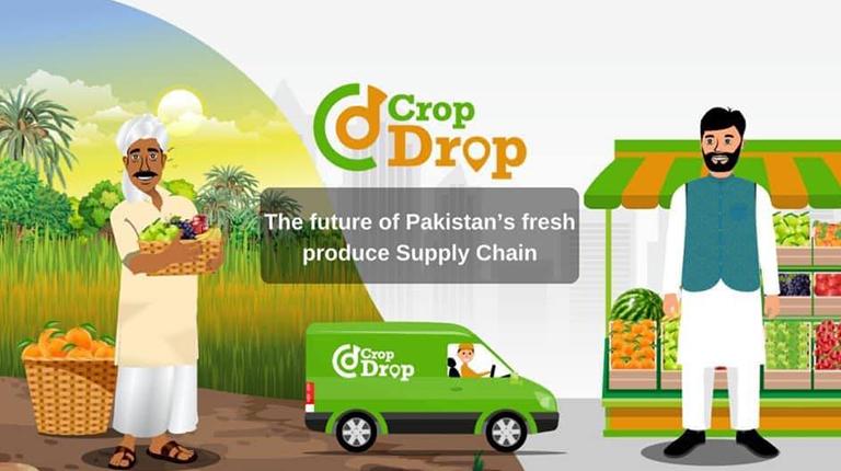 crop drop -blog